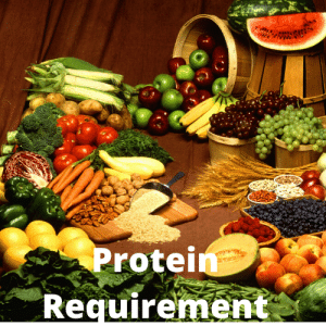Protein Requirement